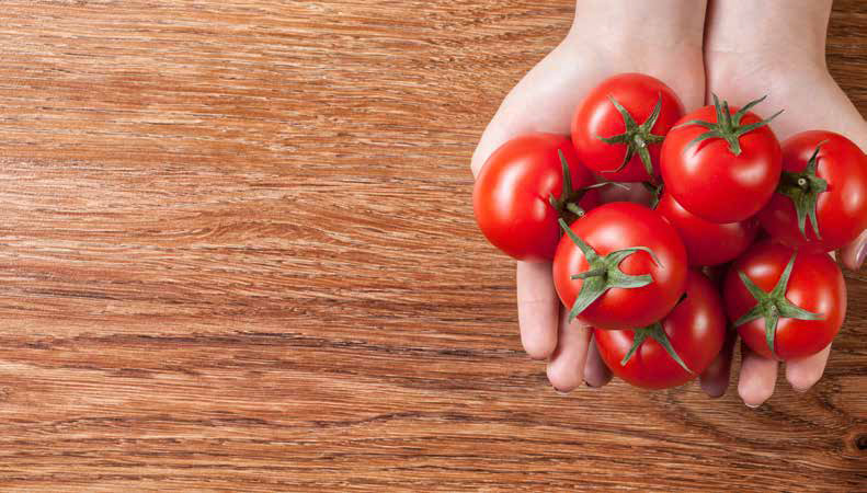 red tomatoes in hands on wooden background