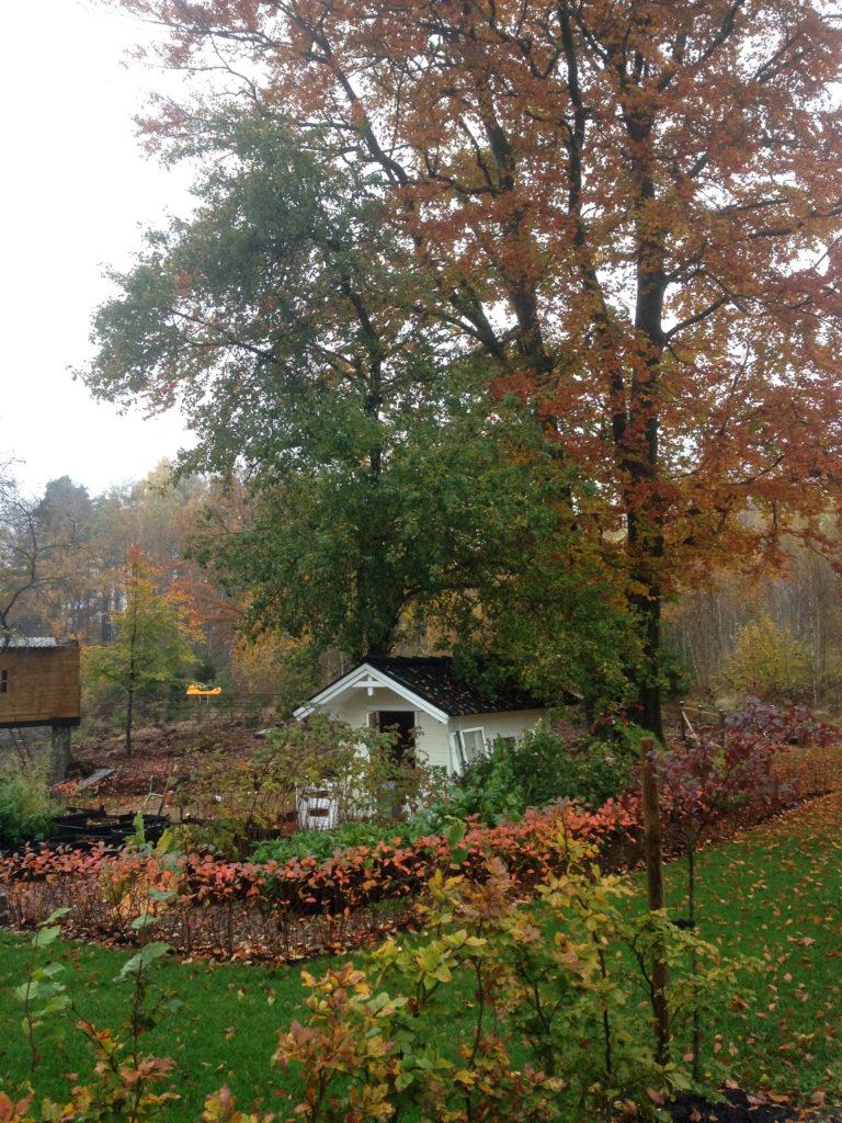 Höstträdgård