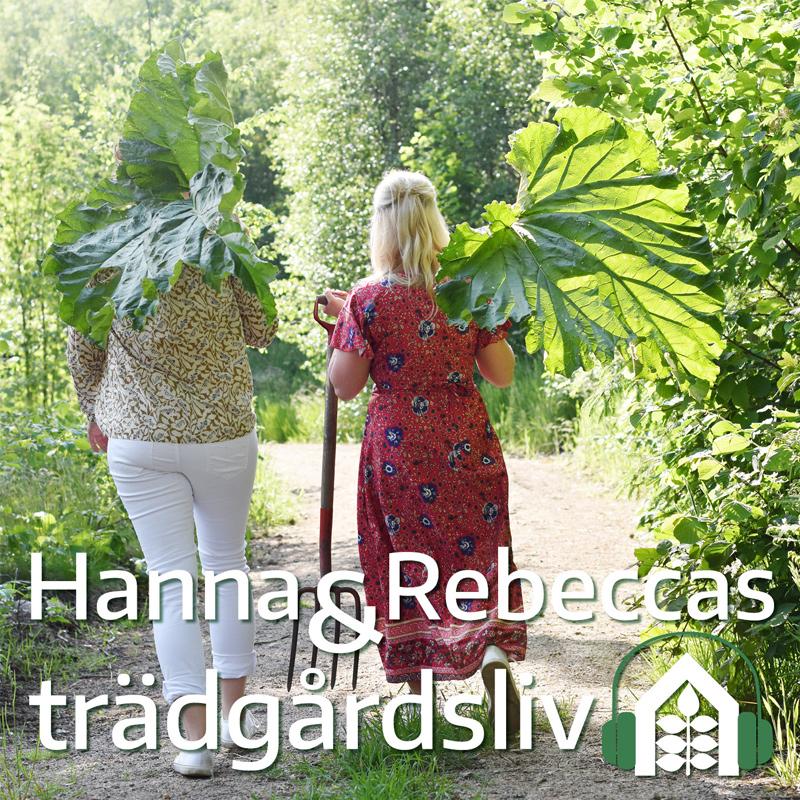 Hanna & Rebeccas trädgårdsliv podd - avsnitt 2.