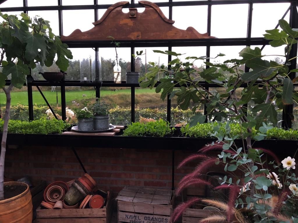 Säbädd i växthuset