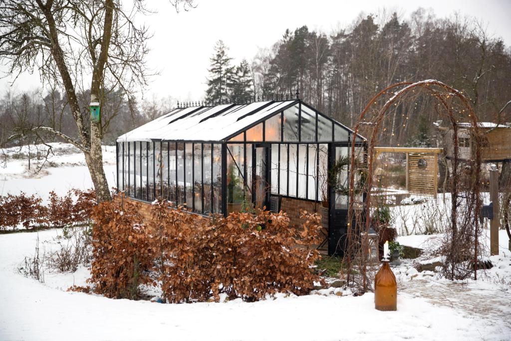 Svart mur växthus i vinter