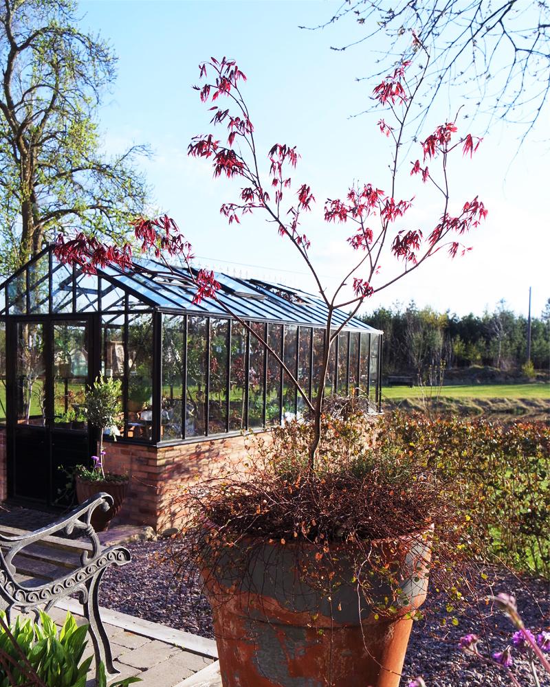 Levande krukor och växthus