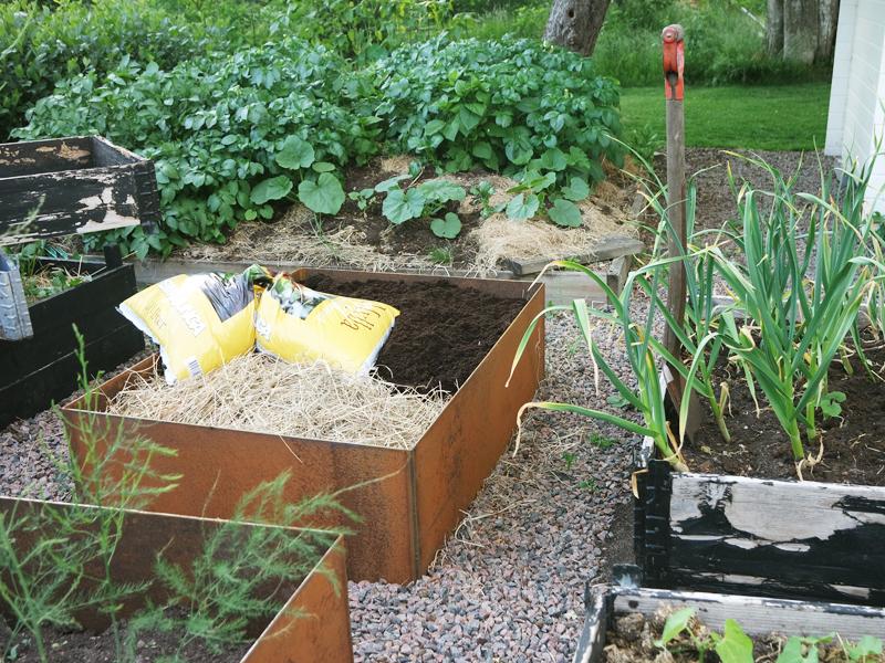 Renovera köksträdgården.