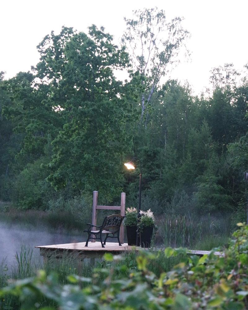belysning trädgård
