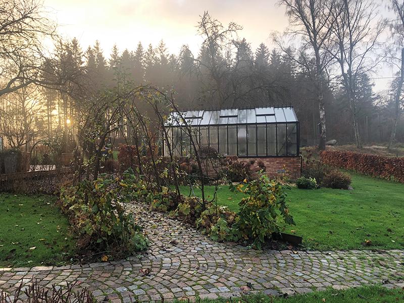 Vad växer i köksträdgården nu?