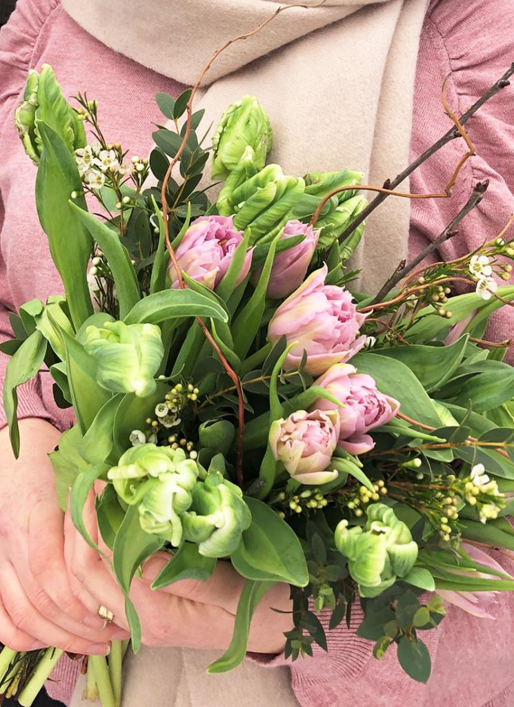 Tulpaner – kommer med vår.